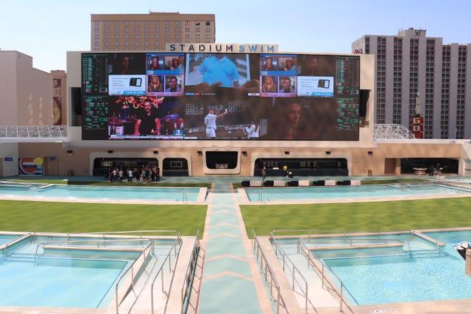 Circa Stadium Swim